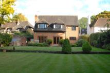 5 bedroom Detached house to rent in Vincent Close, Esher...