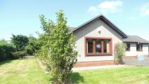 5 bedroom Bungalow in Glenmoriston...