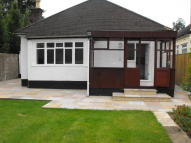3 bedroom Detached Bungalow to rent in Darby Crescent...