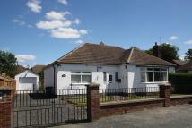 Bungalow for sale in Malvern Close, Newmarket