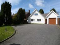 Detached Bungalow to rent in Gentleshaw Lane...