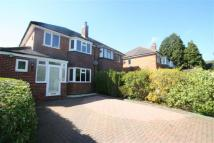 Hampton Road semi detached property to rent