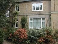Flat to rent in Northcroft House...