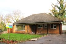 Detached Bungalow to rent in Wellington Avenue...