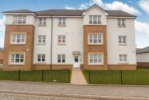 Leyland Road Flat to rent