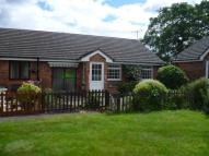2 bed Terraced Bungalow in Vicarage Lane, Gresford...