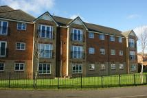 2 bed Apartment to rent in Lamberton Drive, Brymbo...