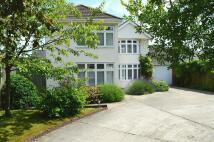 North Pickenham Road property