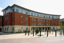 property to rent in Tripos Court, Homerton Street, Cambridge, Cambridgeshire, CB2 8NY