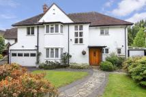 Detached property to rent in Brook Gardens...