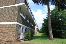 Apartment to rent in Norbiton