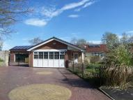 Detached Bungalow for sale in Lowerfold Drive...
