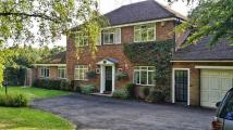 Detached property in Daws Hill Lane, Daws Hill