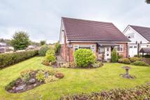 3 bed Detached Bungalow for sale in Massey Brook Lane, Lymm...