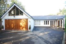 5 bed Detached Bungalow in Brook Lane...