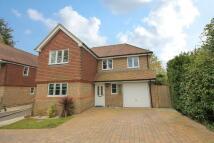 Detached home to rent in Cherry Way, Felbridge
