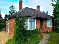 2 bed Bungalow to rent in Garden Walk, Royston, SG8