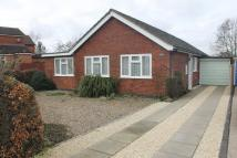 3 bed Detached Bungalow to rent in Highfield Close...