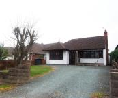Detached Bungalow to rent in Sapcote Road, Burbage