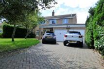 Hubbard's Loke Detached house for sale