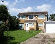 Detached property to rent in Lowestoft Road...