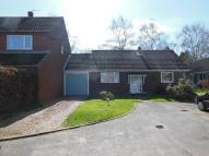 Bungalow for sale in Burgess Way, Brooke, NR15