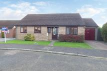 3 bed Detached Bungalow for sale in Firtree Close, Brundall...