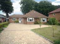 4 bedroom Detached Bungalow in Acacia Road...