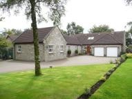 5 bedroom Detached house in Ashwood Steading...
