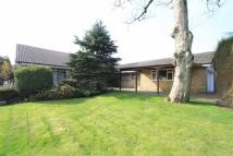 Copperfield Detached Bungalow for sale