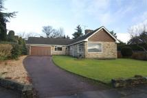 Detached Bungalow for sale in The Croft, 18...