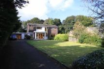 4 bed Detached house for sale in 8, Canterbury Close...