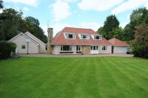 4 bed Bungalow in London Road, Boston