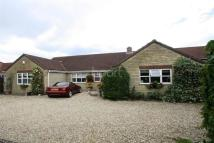 4 bed Bungalow to rent in Waddington