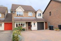 4 bed Link Detached House for sale in Bentley Drive, Harlow...