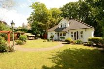 Detached Bungalow for sale in The New Lodge...