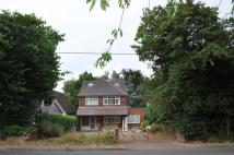 Detached house to rent in Chartridge Lane, Chesham...