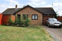 2 bed Bungalow to rent in Woodmer Close...