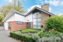 4 bed Detached Bungalow for sale in Bent Lane, Culcheth...