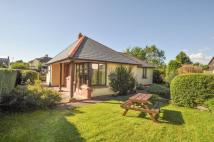 2 bed Detached Bungalow in Kells Road, Coleford
