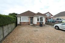 5 bedroom Detached Bungalow to rent in Herbert Avenue...