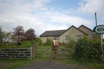 property for sale in Commonside, Selston, Selston