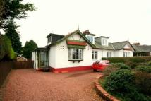 3 bed Bungalow in Eastwoodmains Road...
