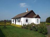 Hamilton Cottage to rent