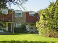 Ground Maisonette to rent in The Cedars, Milton Road...