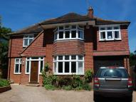 Detached property to rent in Kirkdale Road, Harpenden...
