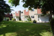 1 bedroom Ground Flat to rent in The Cedars, Milton Road...