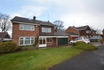 4 bed Detached home to rent in Ladygates, CW3