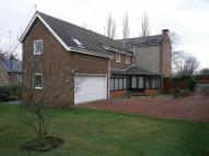 5 bed Detached house in Lambton Avenue, Whickham...