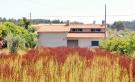 Detached Bungalow in Penela, Beira Litoral